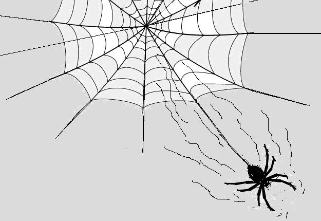 Verlaat je web voor een betere schuilplaats!
