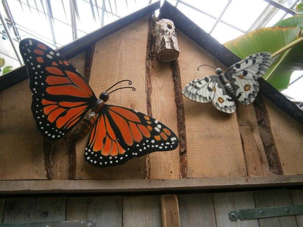 In welke opzichten lijken gelovigen op geestelijk gebied op vlinders?
