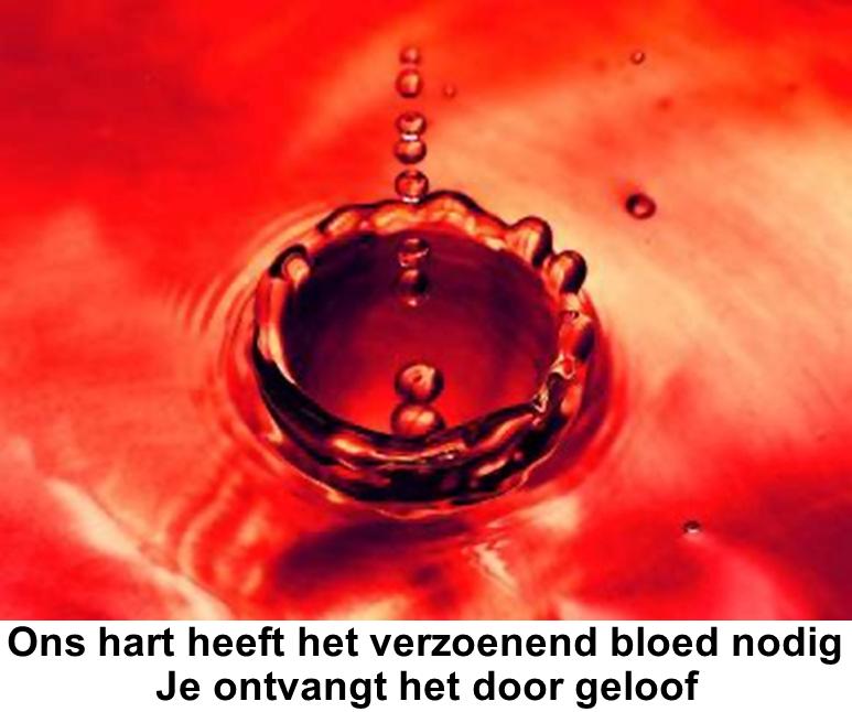 Ons hart heeft het verzoenend bloed nodig