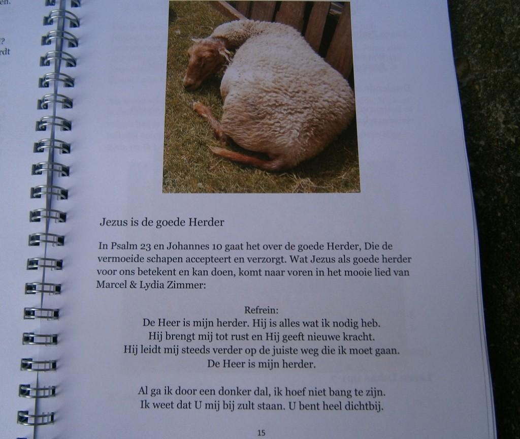 Kom op, volg de Herder voor rust, levensmoed en nieuwe kracht