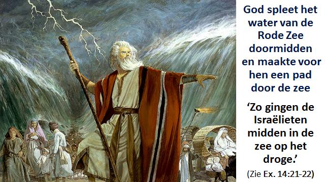 Exodus 994v