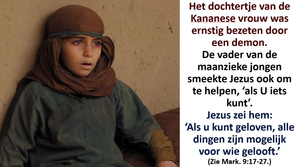 geloof 29s