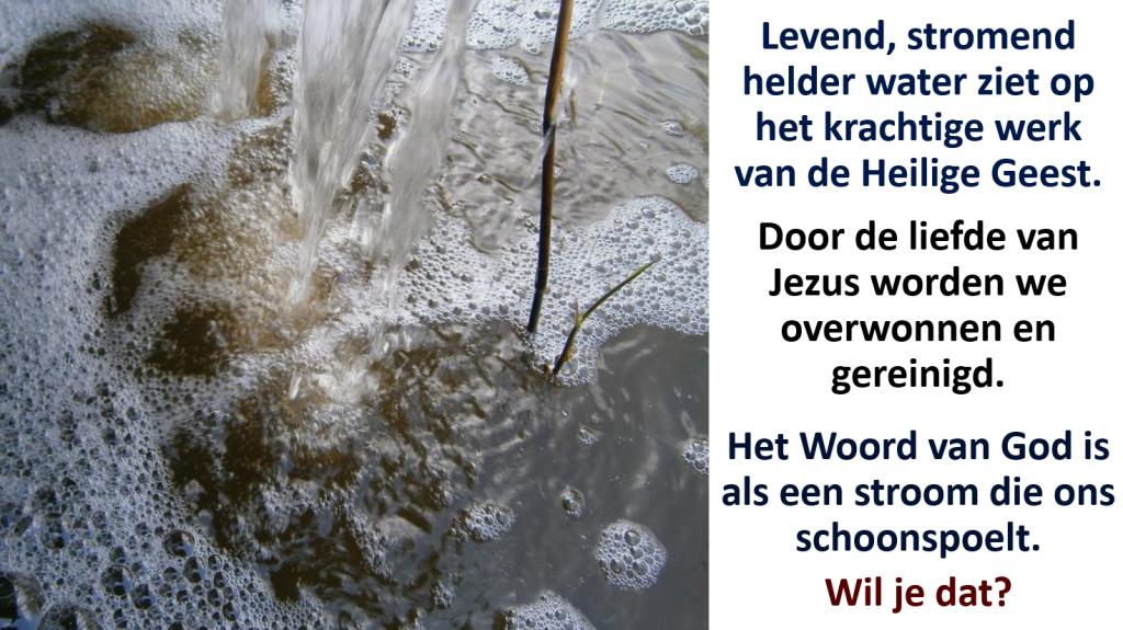 water 31u