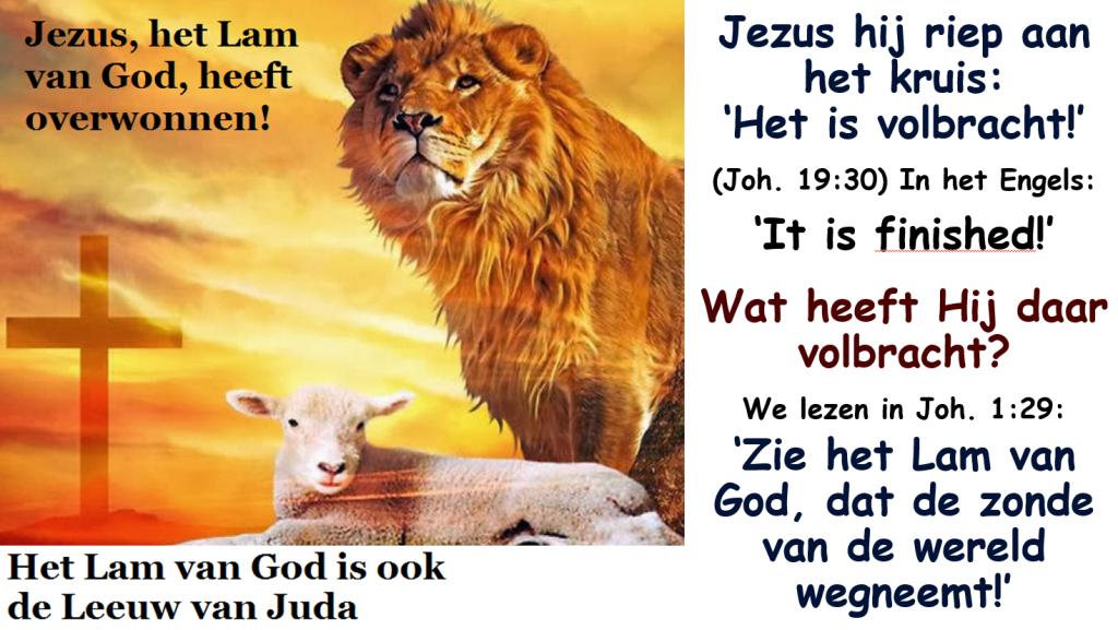 Bloed dat reinigt Het Lam en de Leeuw